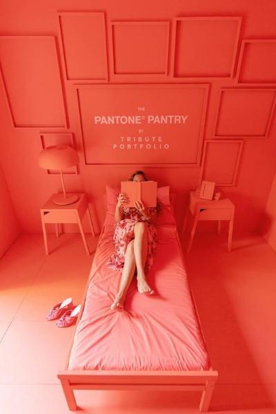 Pantone Tribute Portfolio